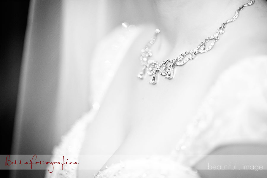 bride sparkling necklace