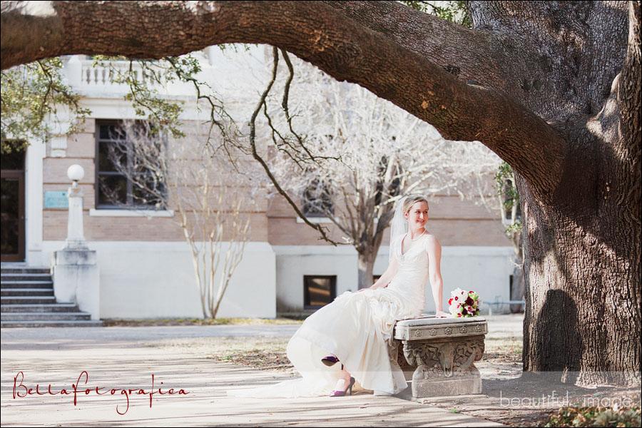 texas a&m century oak tree bridal photos