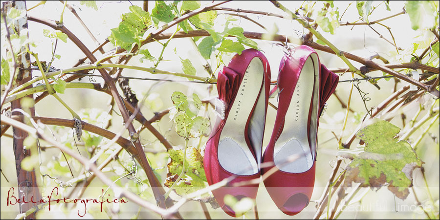 red bridal shoes hanging on a vine