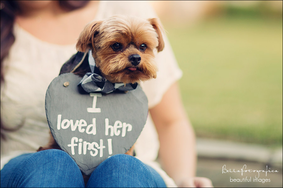 Beaumont engagement photos with puppy